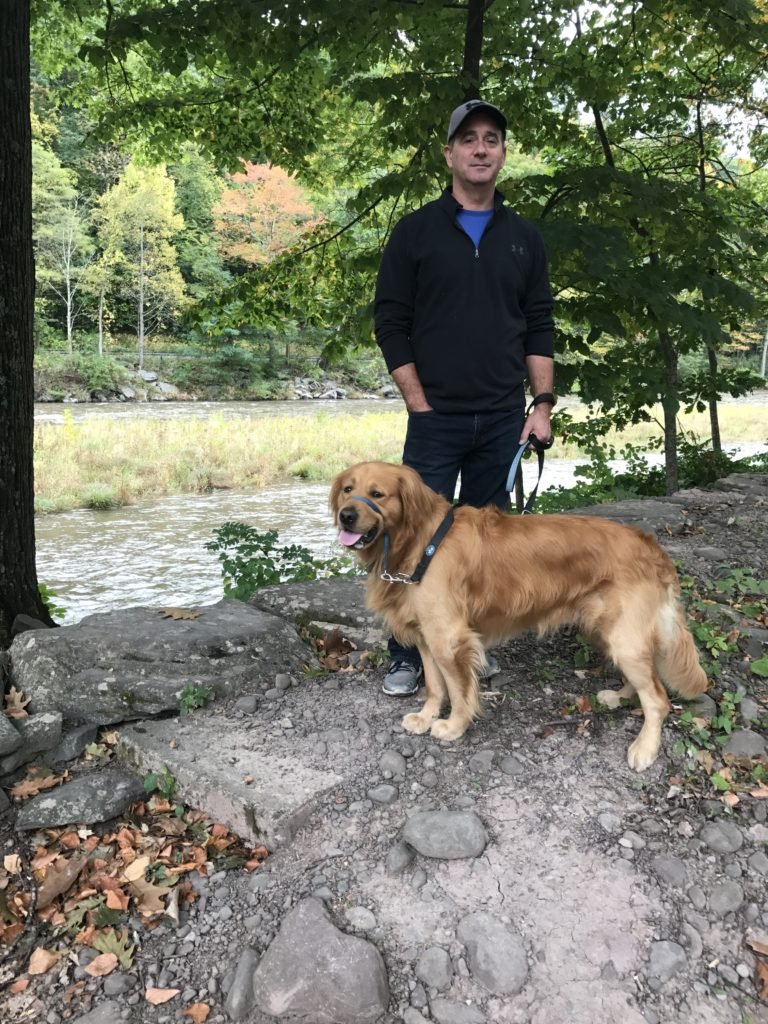 Buddy Golden Retriever at Sleepy Hollow