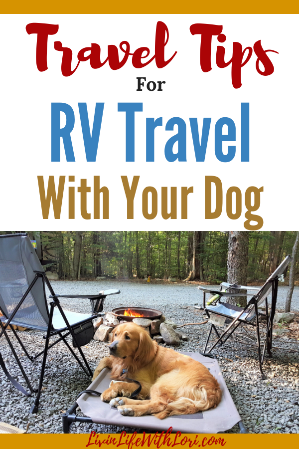 RV Travel with your Dog