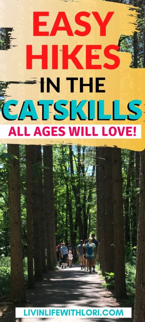 Easy Hikes In The Catskills For All Ages