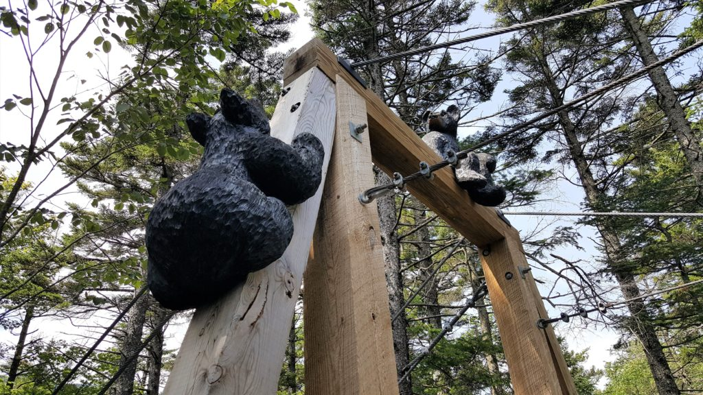 Bear carvings at Lost River Gorge
