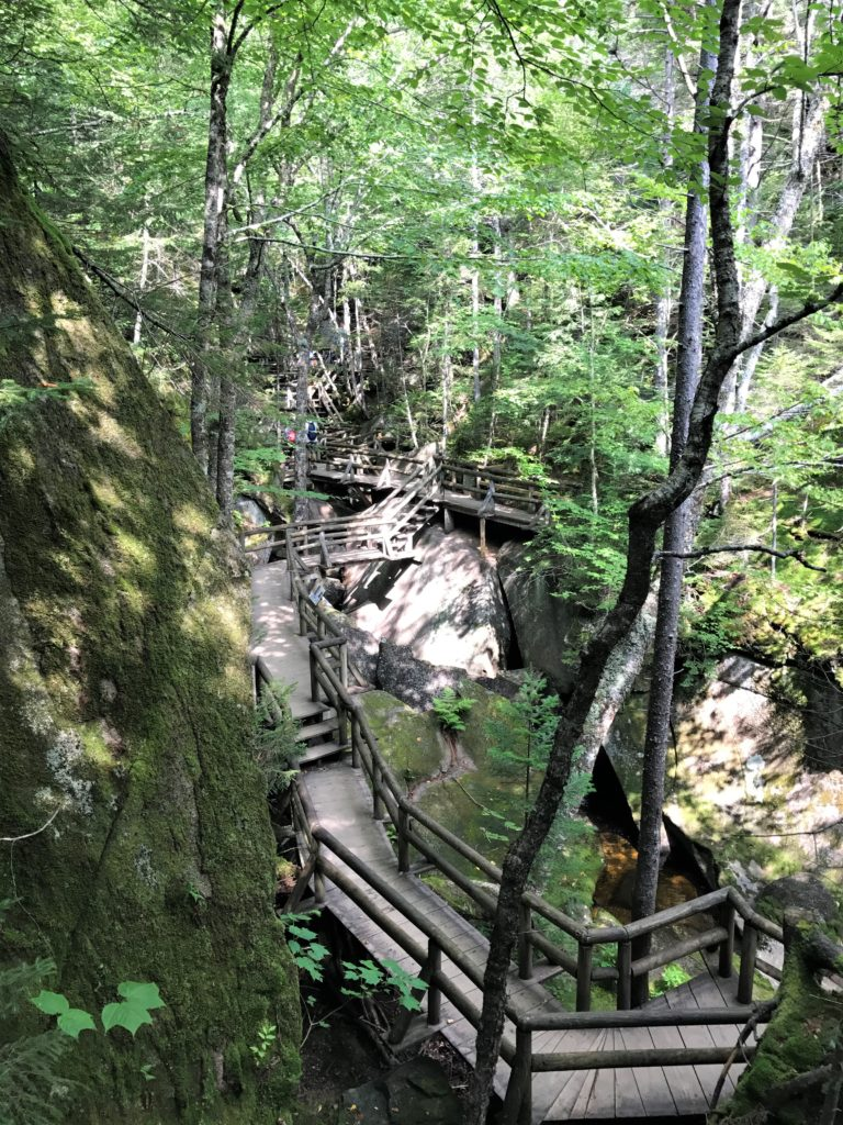 Path at Lost River Gorge