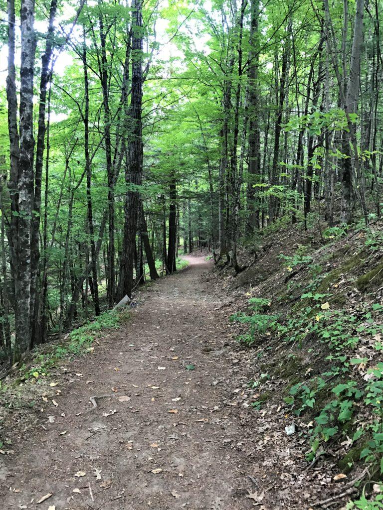 Hiking path to lower Minekill Falls