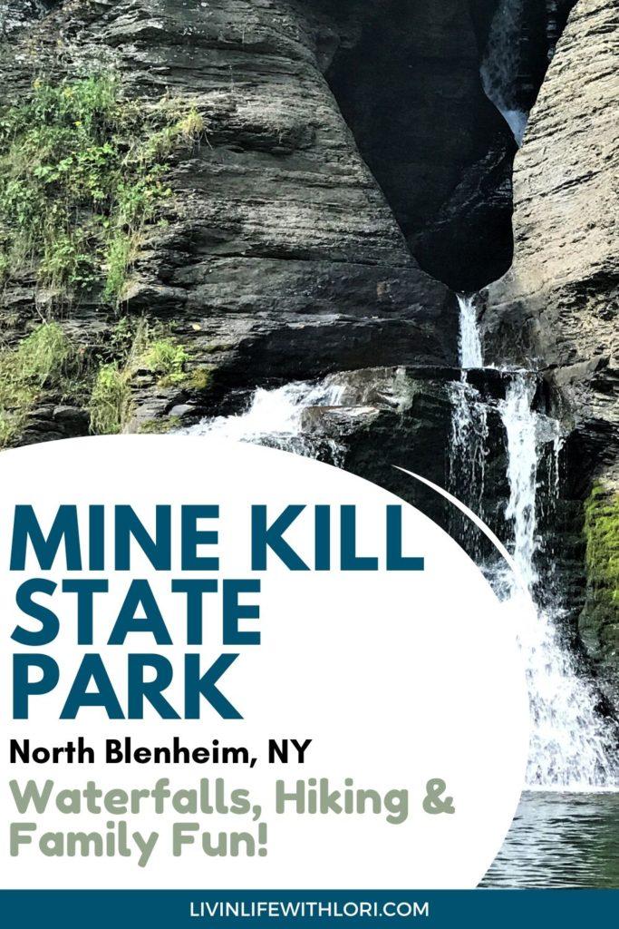 Mine Kill State Park North Blenheim New York