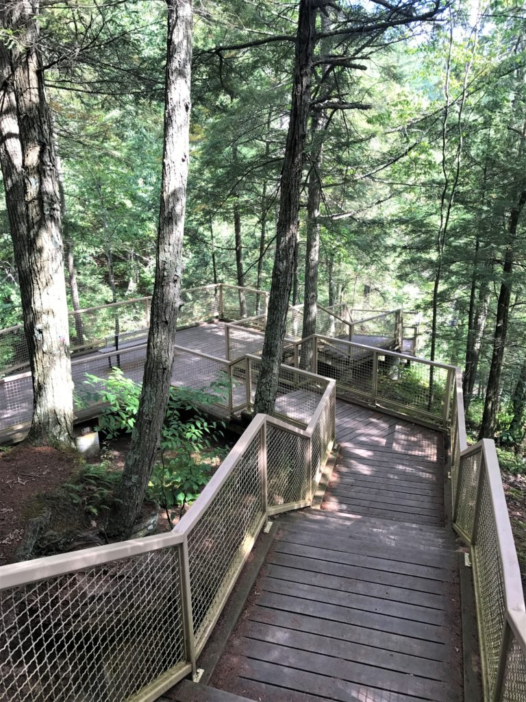 Stairway leading to Overlook at Minekill State Park