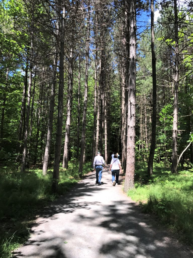 easy hike Catskills for all ages
