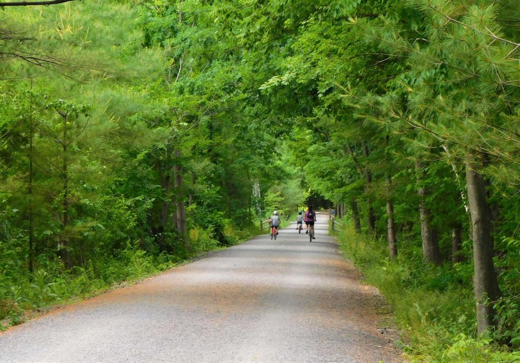 Biking on the Ashokan Rail Trail
