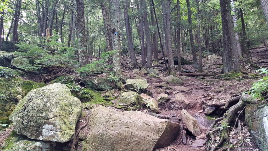 Blue Encampment Trail North South Lake
