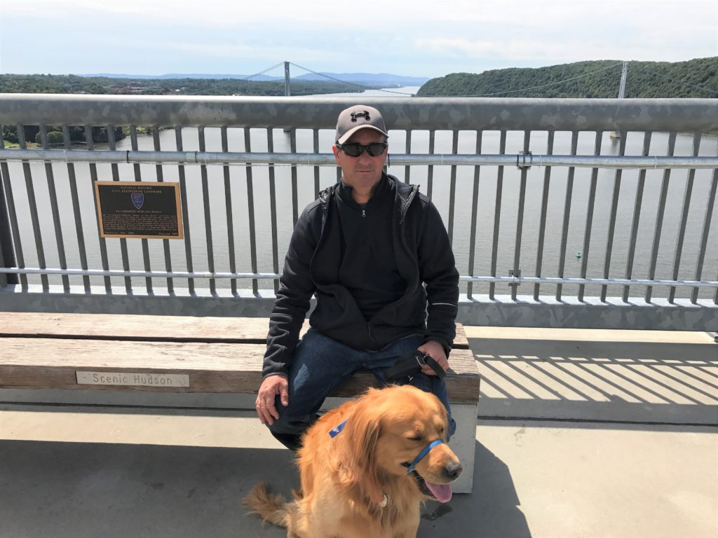Golden retriever walking on the walkway over the Hudson with handler