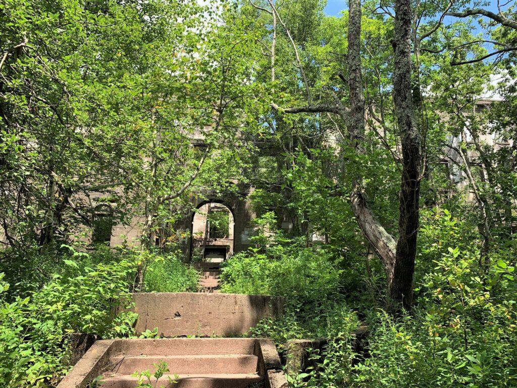 Overlook Mountain House overgrown ruins