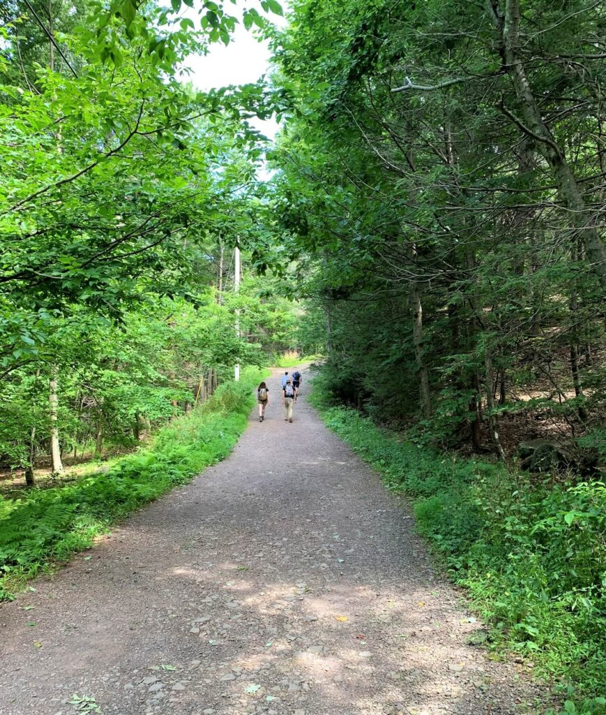 Start to Overlook Mountain trail Woodstock NY