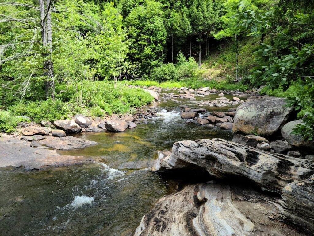 trout brook at Natural Stone Bridge