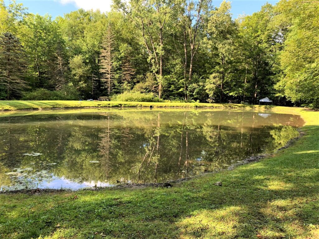 Pond at Mt Greylock Campsite Park