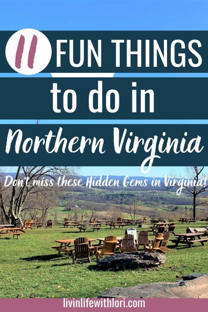 11 Fun Things To Do In Northern Virginia
