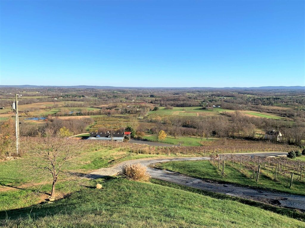 View from Bluemont Vineyard