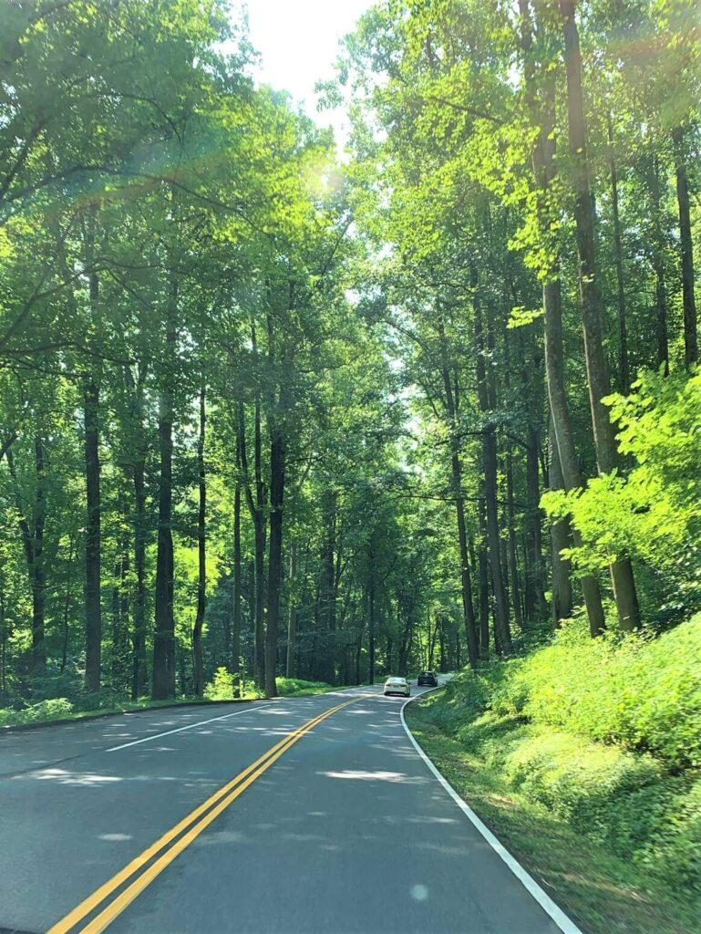 Auto tour of Great Smoky Mountain National Park
